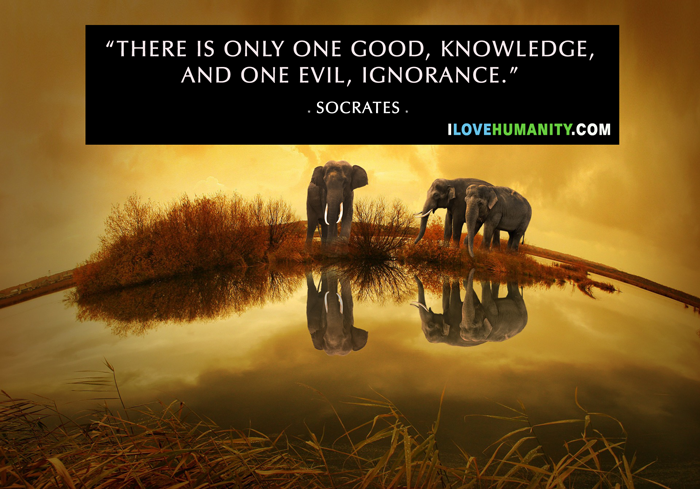 There is only one good, knowledge, and one evil, ignorance. — Socrates