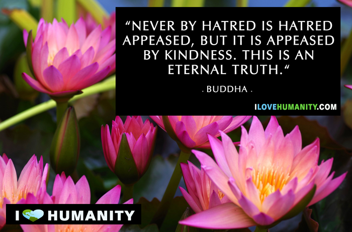 Never by hatred is hatred appeased, but it is appeased by kindness. This is an eternal truth. — Buddha, I Love Humanity