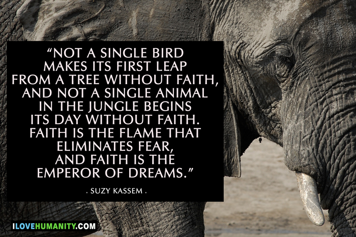 Not a single bird makes its first leap from a tree without faith, and not a single animal in the jungle begins its day without faith. Faith is the flame that eliminates fear, and faith is the emperor of dreams. — Suzy Kassem